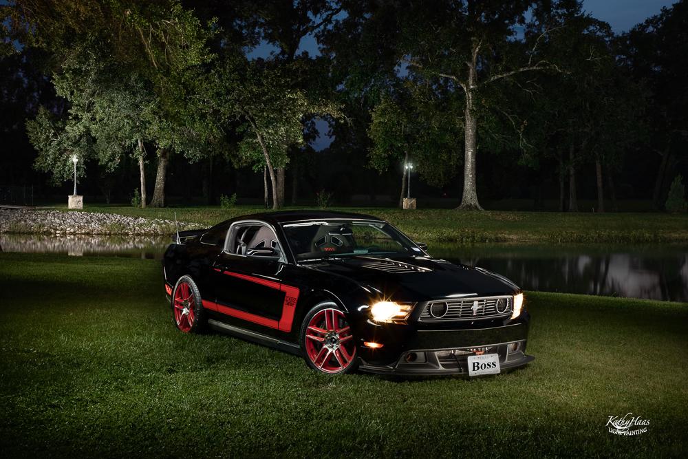 Denise-Davis-Mustang-copy-2.jpg
